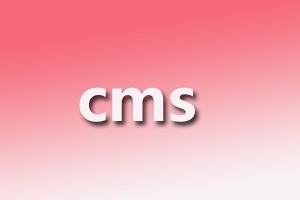 常见的一些实用的cms网站搭建系统