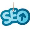 seo网站优化关键词如何做如果是新站如何快速做排名