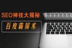 上海seo介绍:霸屏引流以及一些优化话中的常用技巧