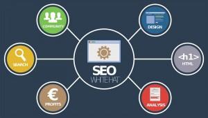 seo网站优化基础:新站如何引导来流量