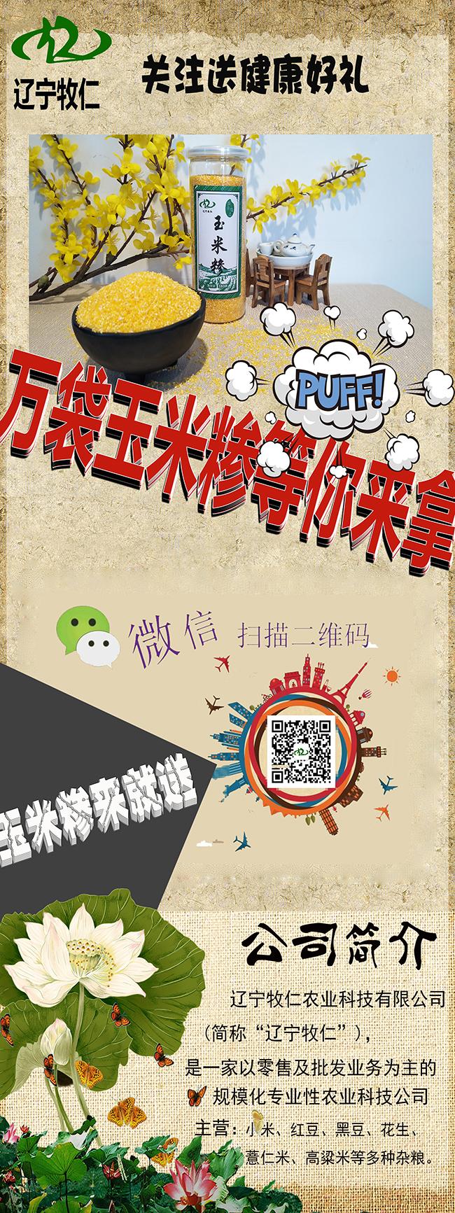 【农业杂粮行业】农业博览会-X展架设计|【雨中漫步网络】上海seo优化 第2张