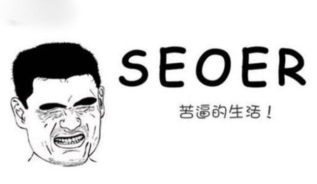 上海seo介绍你所不知道的SEO网站优化