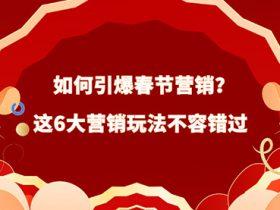 2020上海seo介绍引爆春节营销6大玩法!