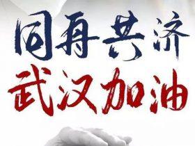 上海seo:武汉疫情后中国最大的商机就在这10大变化里