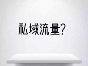 上海seo-浅谈李佳琦的私域流量玩法